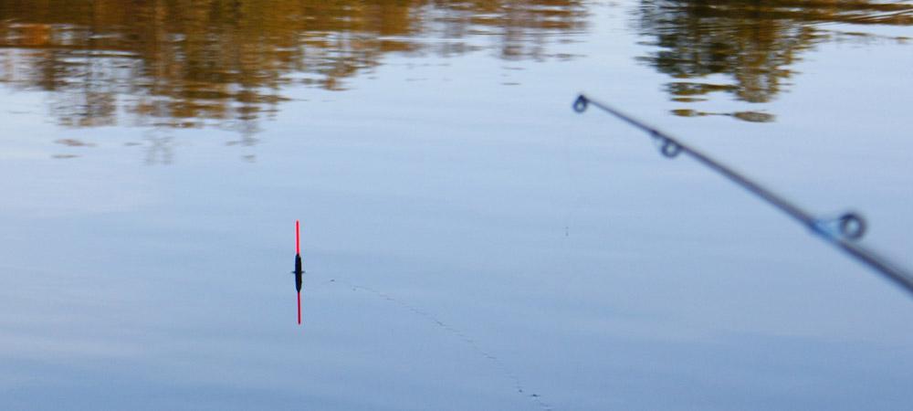крючок и поплавок на карася видео