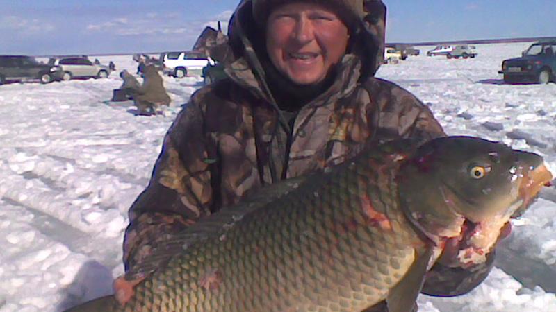 рыбалка на дону ловля сазана