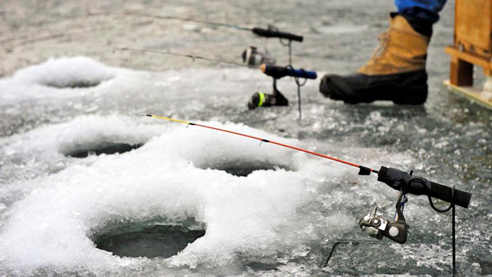 Прогноз погоды, который мы используем для рассчёта клёва рыбы в посёлке Самоделки