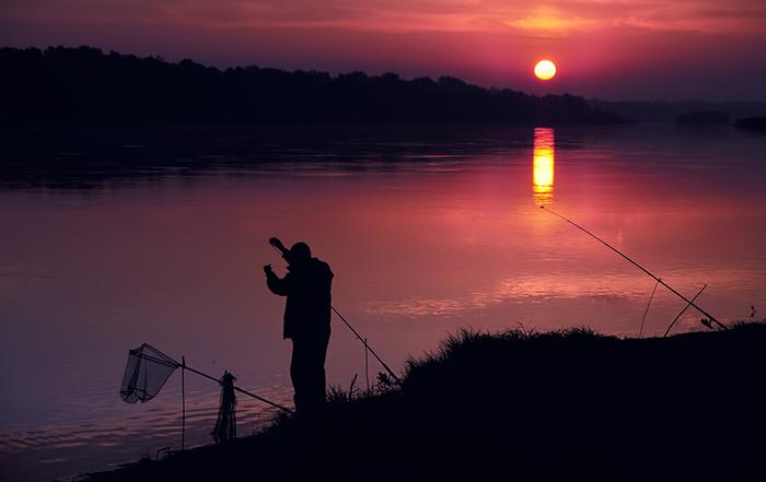 рыбный клев утром