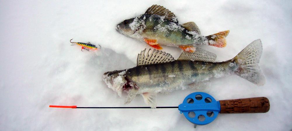 Лучшие зимние удочки для ловли на балансир