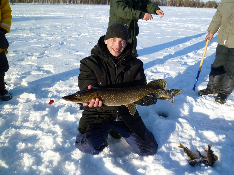 рыбалка новосибирск и новосибирская область