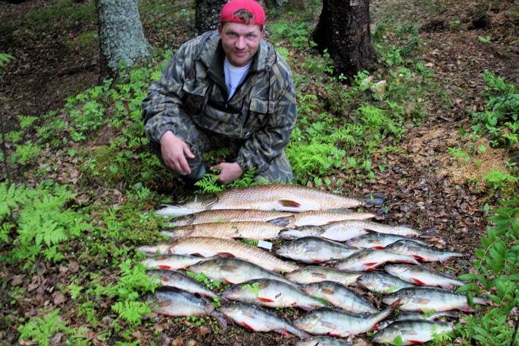 окунь щука рыбалка в небольших озерах реках таежных видео