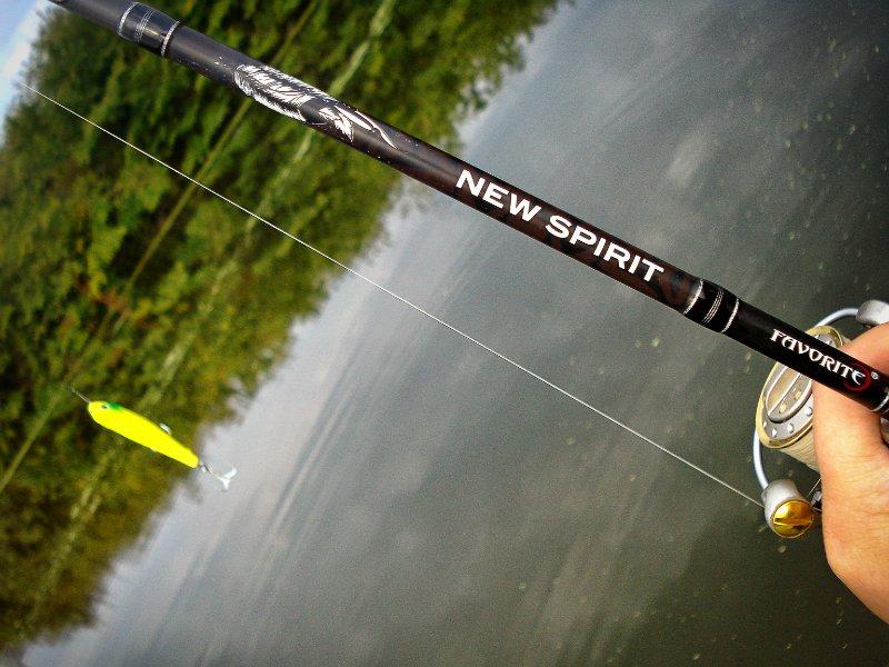 выбор спиннинга для ловли на лайт