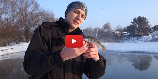 Зимняя рыбалка на манку
