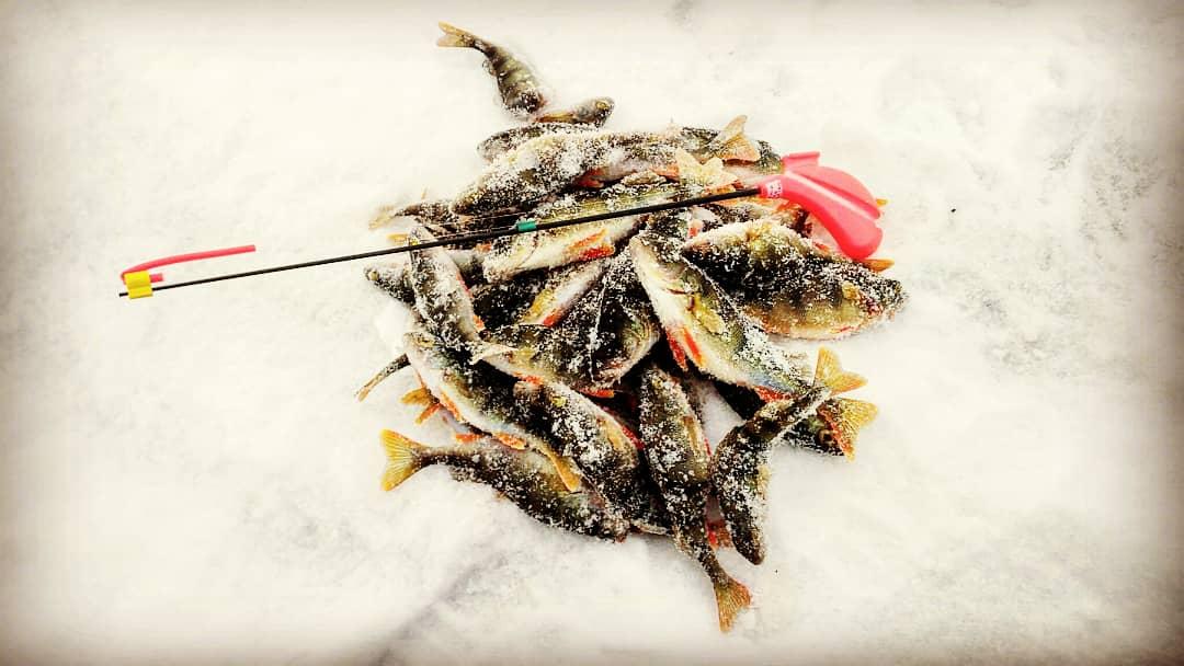 Открытые лично-командные соревнования НСО по ловле на блесну со льда. 21.12.2019 г.