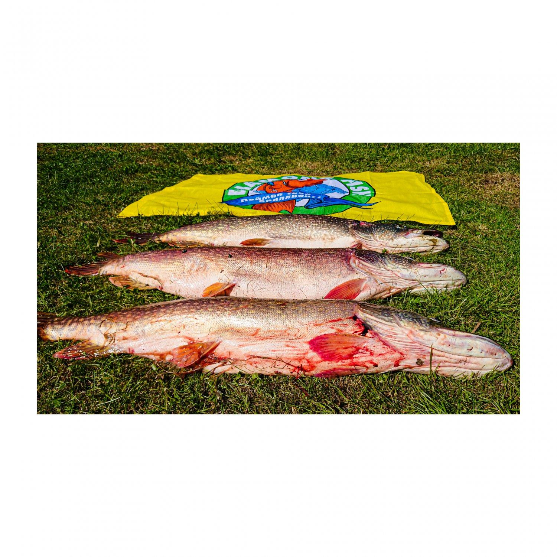 Силиконовые приманки Diamond Fish, большой ассортимент приманок от UL до Heavy Jig. Цены доступные каждому.