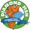 Логотип Dimond Fish_полный.png