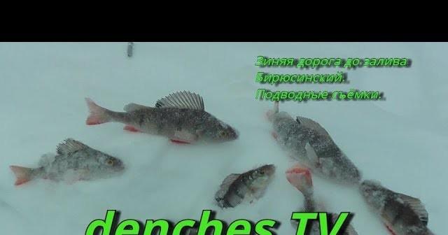 выставка рыбалка и подводная охота