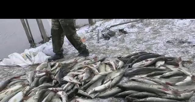 эконом рыбалка на раскатах в астрахани