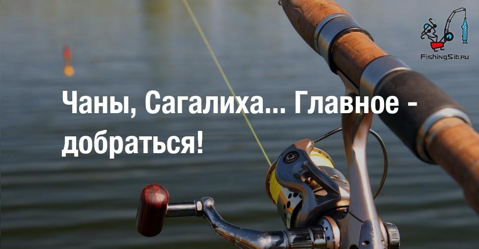 гей форум новосибирск чаны