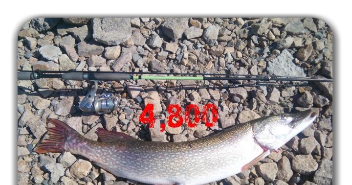 мелочевка рыбалка